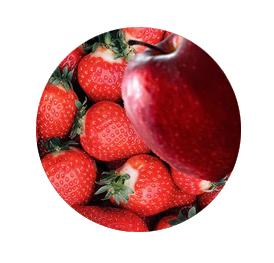 Pocket-Erdbeere